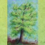 B_Bäume2